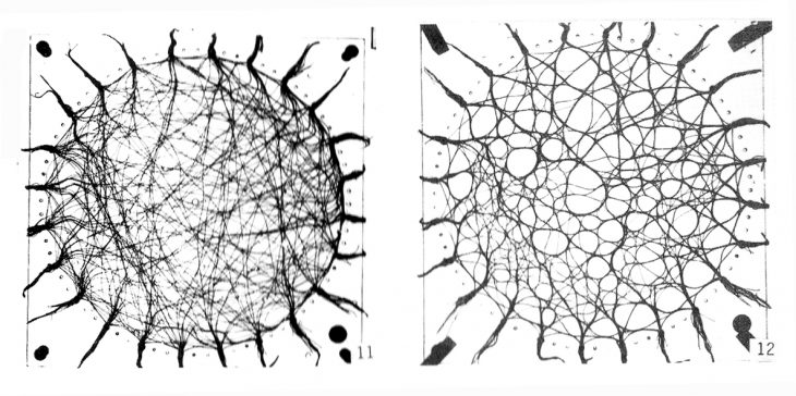 Wool thread model - From Schumacher - Parametricism - AD 2009